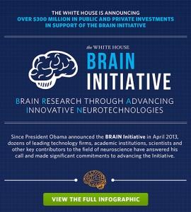 brain_infographic2014_teaser